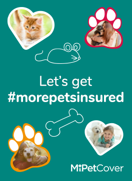 Let's get more pets Insured 3 Mile Get
